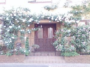 薔薇の館・永福